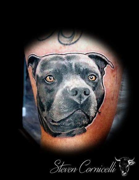 Tattoos - pitbulls everywhere - 138342