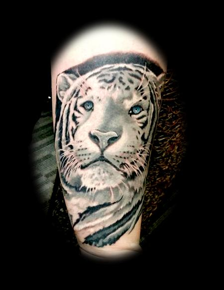 Tattoos - white tiger - 129185