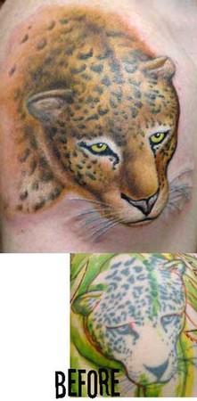Gabriel Cece - jaguared