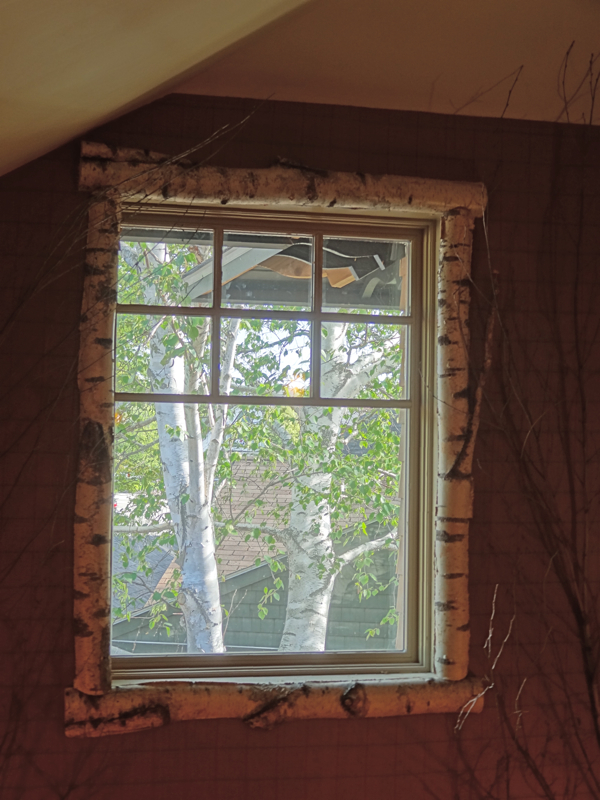 white birch log window trim
