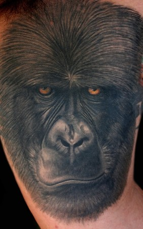 Jesso - Brandons Gorilla cover up