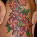 Tattoos - Sierras Plumerias - 33353