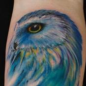 Tattoos - Blueberry Owl - 128039