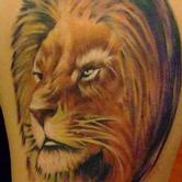Tattoos - Lion - 77355