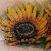 Tattoos - Sunflowers - 134286
