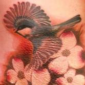 Tattoos - Bird and Flowers - 76917