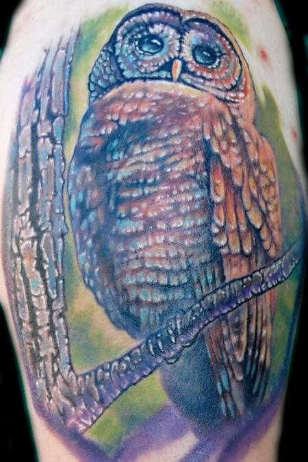 Evan Olin - Full color realistic Spotted Owl tattoo