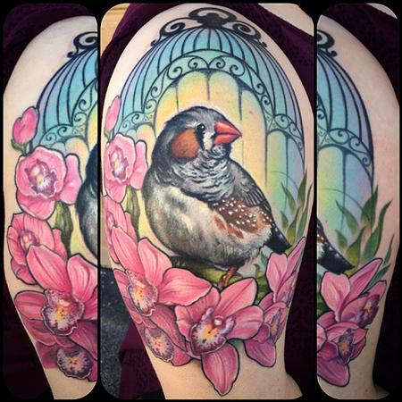 zebra finch Tattoo Design Thumbnail