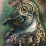 Color realistic owl tattoo Tattoo Design Thumbnail
