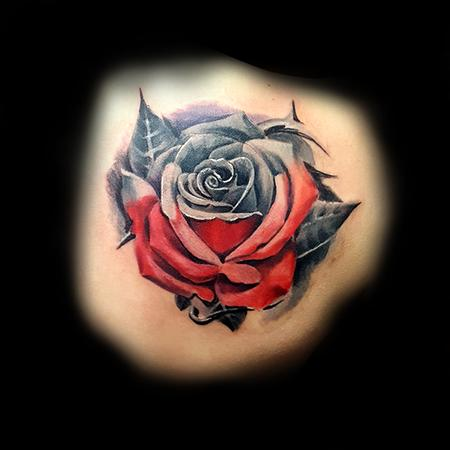 red and grey rose