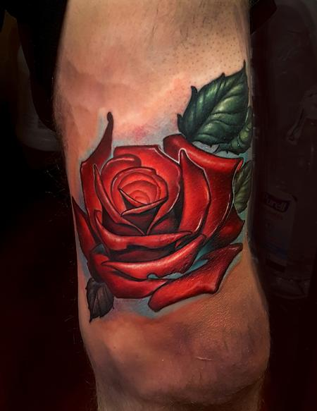 Ryan Muldoon - rose coverup