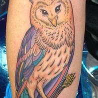 Tattoos - bright owl with arrows - 86622