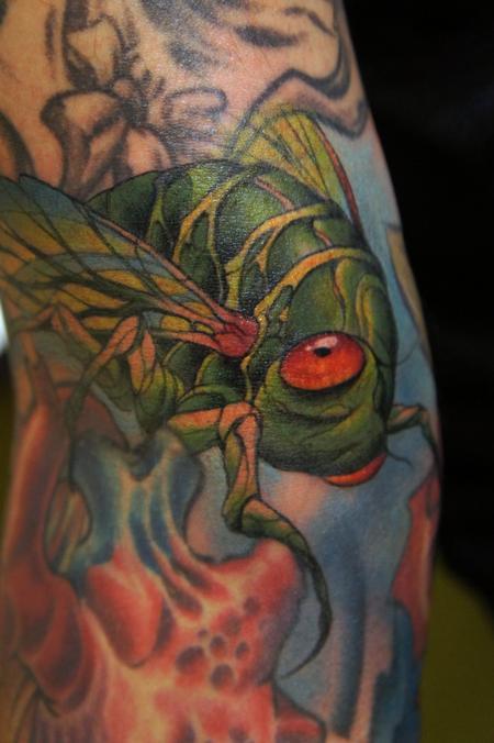 Tom Strom - Cicada