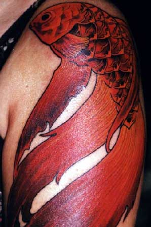 Tattoos Nic Skrade Red Coi click to view large image