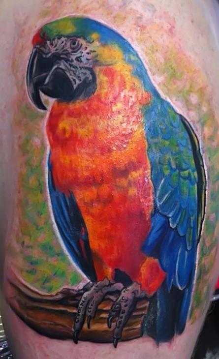 Parrot  Tattoo Design