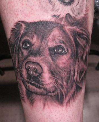 Tattoos - Dog portrait tattoo - 36561