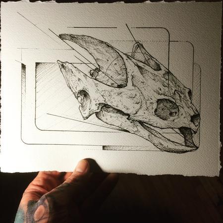 Tattoos - Turtle Skull - 116586