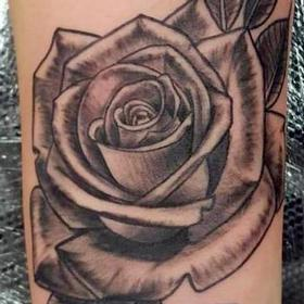 Tattoos - Black and Gray Rose Tattoo - 122833