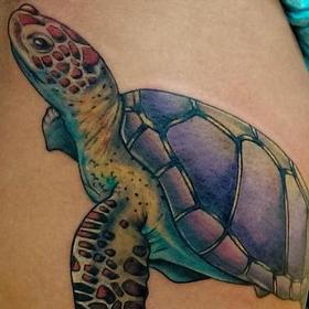 Tattoos - Color Turtle Tattoo - 120346
