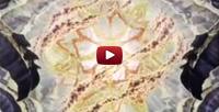 HyperWeb video