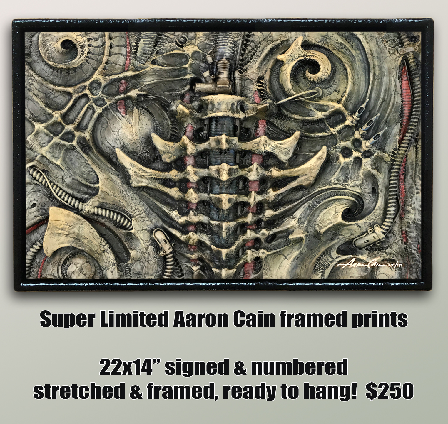 FRAMED Limited Edition AARON CAIN Print!