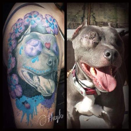 Tattoos - Odin, the pit bull with our eyes by Haylo - 141350