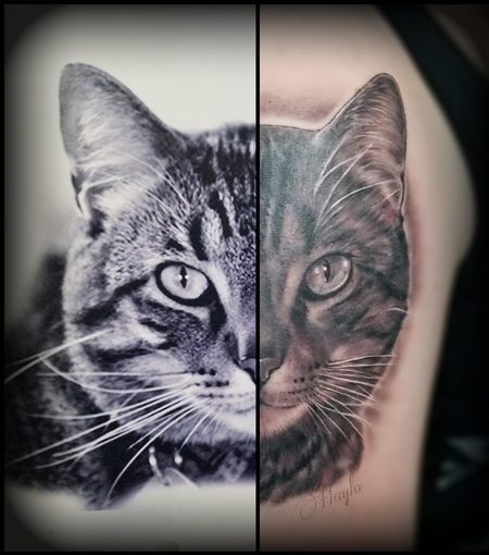 Haylo - Black and Gray Cat portrait tattoo by Haylo