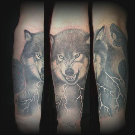 Haylo - Wolf rework tattoo by Haylo