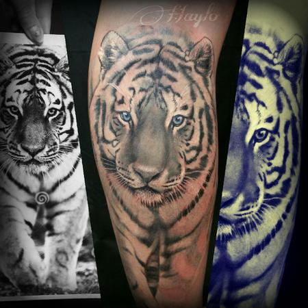 Tattoos - Realistic White Tiger with blue eyes - 103840