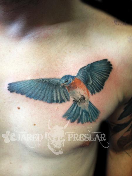 Tattoos - Blue Bird  - 69059