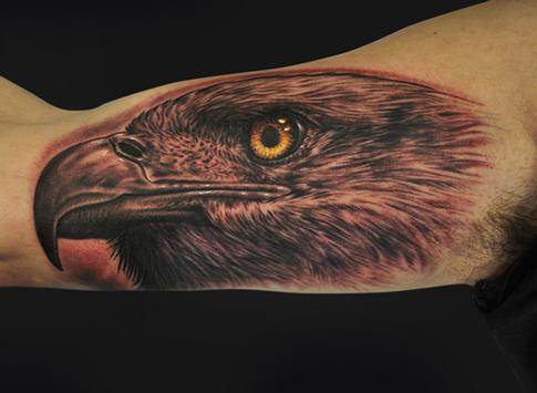 Tattoos - Eagle Tattoo - 64253
