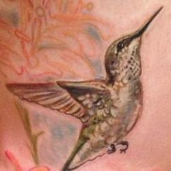 Tattoos - Brookes Hummingbird in Southern Illinois - 91884