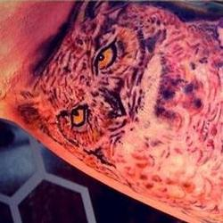 Tattoos - Jodis innerarm owl set (in progress) - 91897