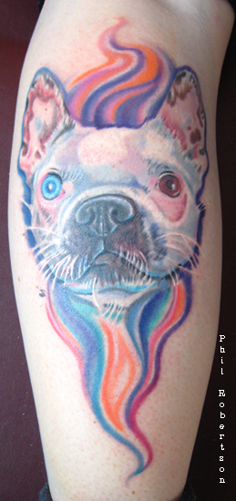 Tattoos - Magical Olive the amazing Boston terrier tattoo - 32479