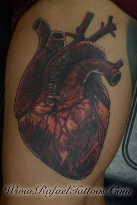Tattoos - Realisteic Anatomical Heart - 111775