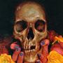 Cranial Visions: Exploring The Skull Through Artis