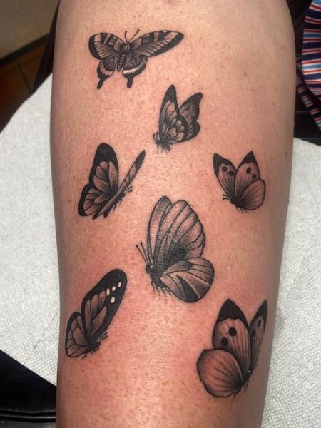 Tattoos - Black and Gray Butterflies - 142256