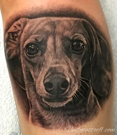 Pepper - Dachshund Portrait