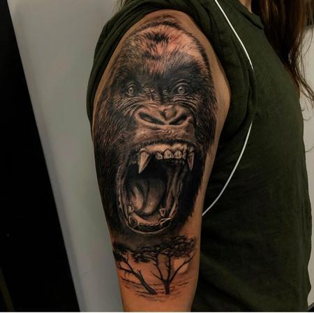 Yoni - Gorilla
